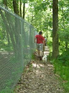 Running at the dog park